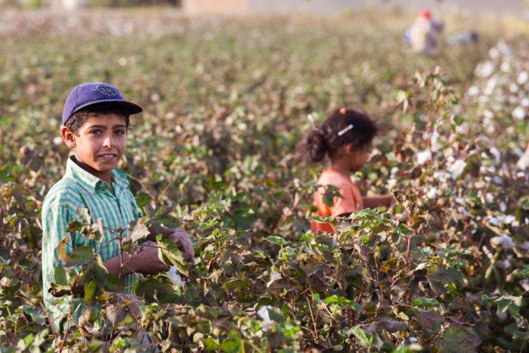 Le CESE alerte sur le respect du droit du travail dans les accords commerciaux